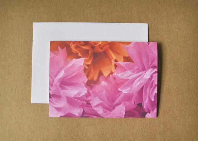 pink and orange crepe flowers photographed for a card
